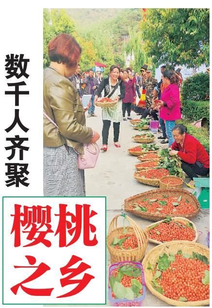 凉山州第十三届冕宁·复兴樱桃节开幕